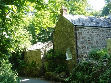 Cappy Cottage - frontage to cove lane